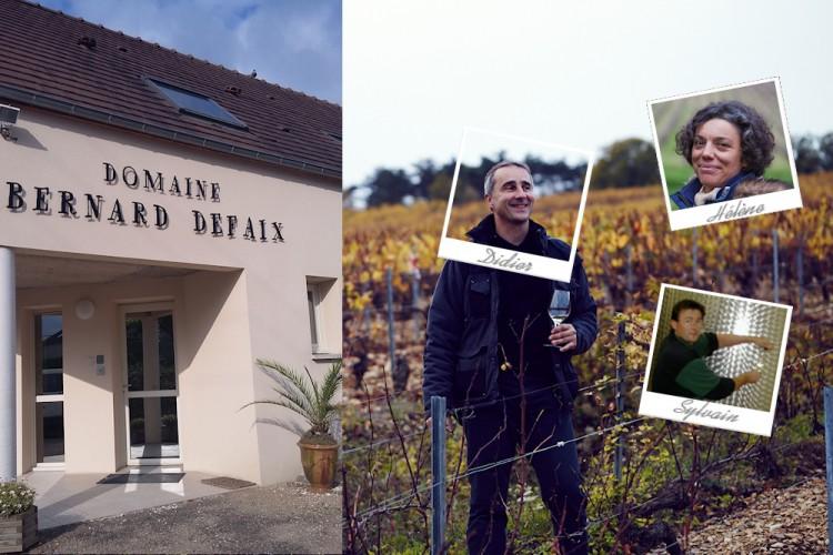 Domaine Bernard Defaix, Chablis wines